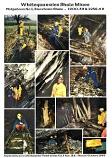 Whitequarries Shale Mines: Philpstoun No 1, Broxburn Shale - 1900-32 & 1938-62