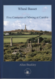 Wheal Bassett, Five centuries of Mining at Carnkie